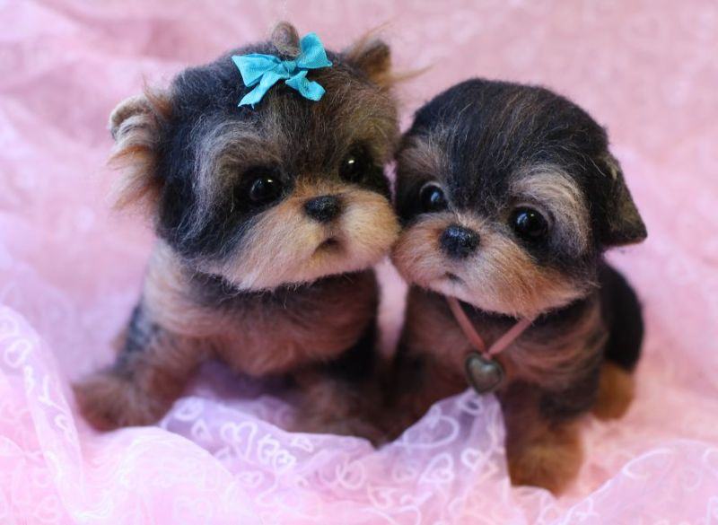 adorable-little-animals-that-i-make-from-wool-9__880