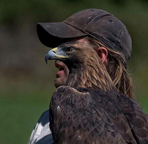 2hawk