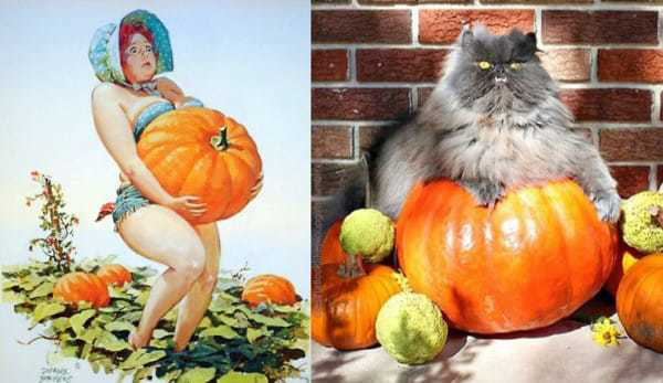 Cats-Vs-Pinup-Models-15