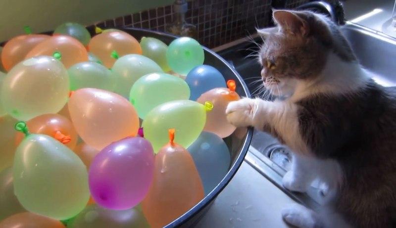 01「これなんだろお~??」好奇心のまま水風船をさわっているとはじけちゃってびっくり!