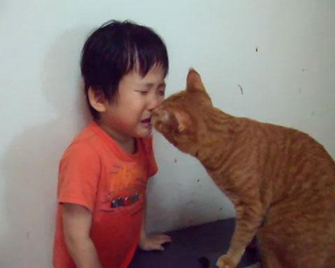 02目の前に泣き止まない少年!ネコさんの取った行動が魔法のような効果を発揮する!