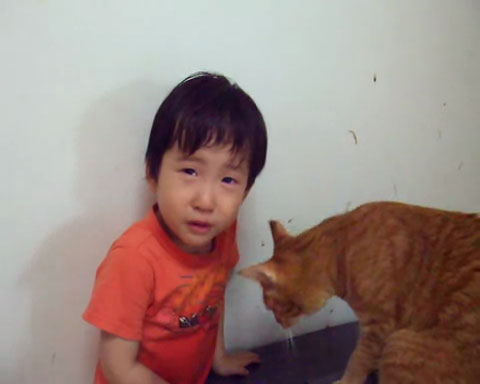 05目の前に泣き止まない少年!ネコさんの取った行動が魔法のような効果を発揮する!