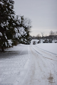 snowy driveway at psas