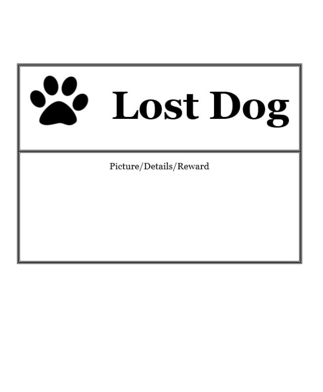 lost cat poster template free download
