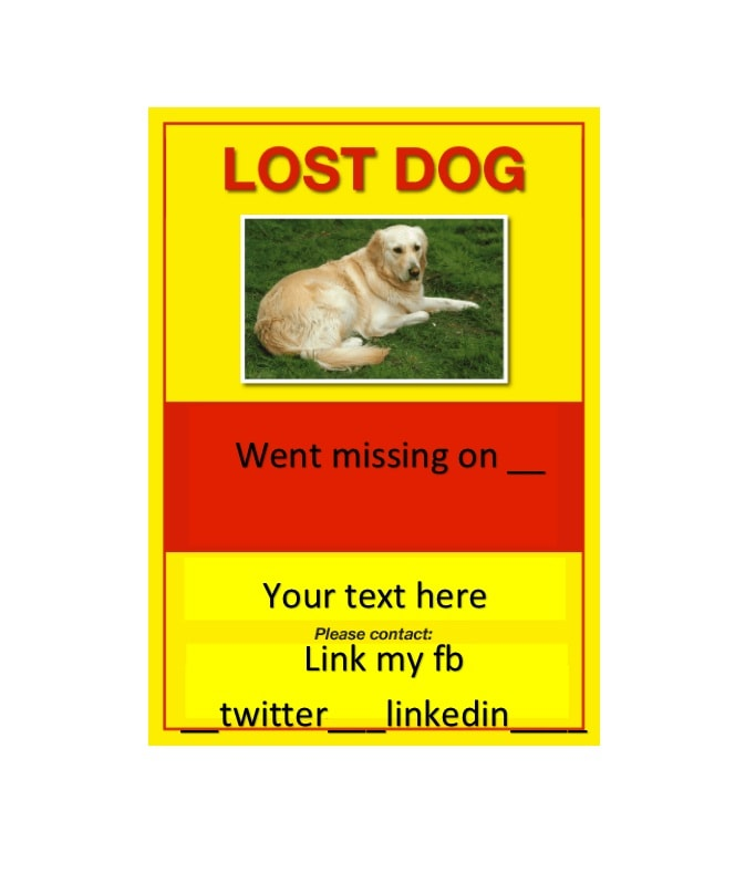 40 lost pet flyers missing cat dog