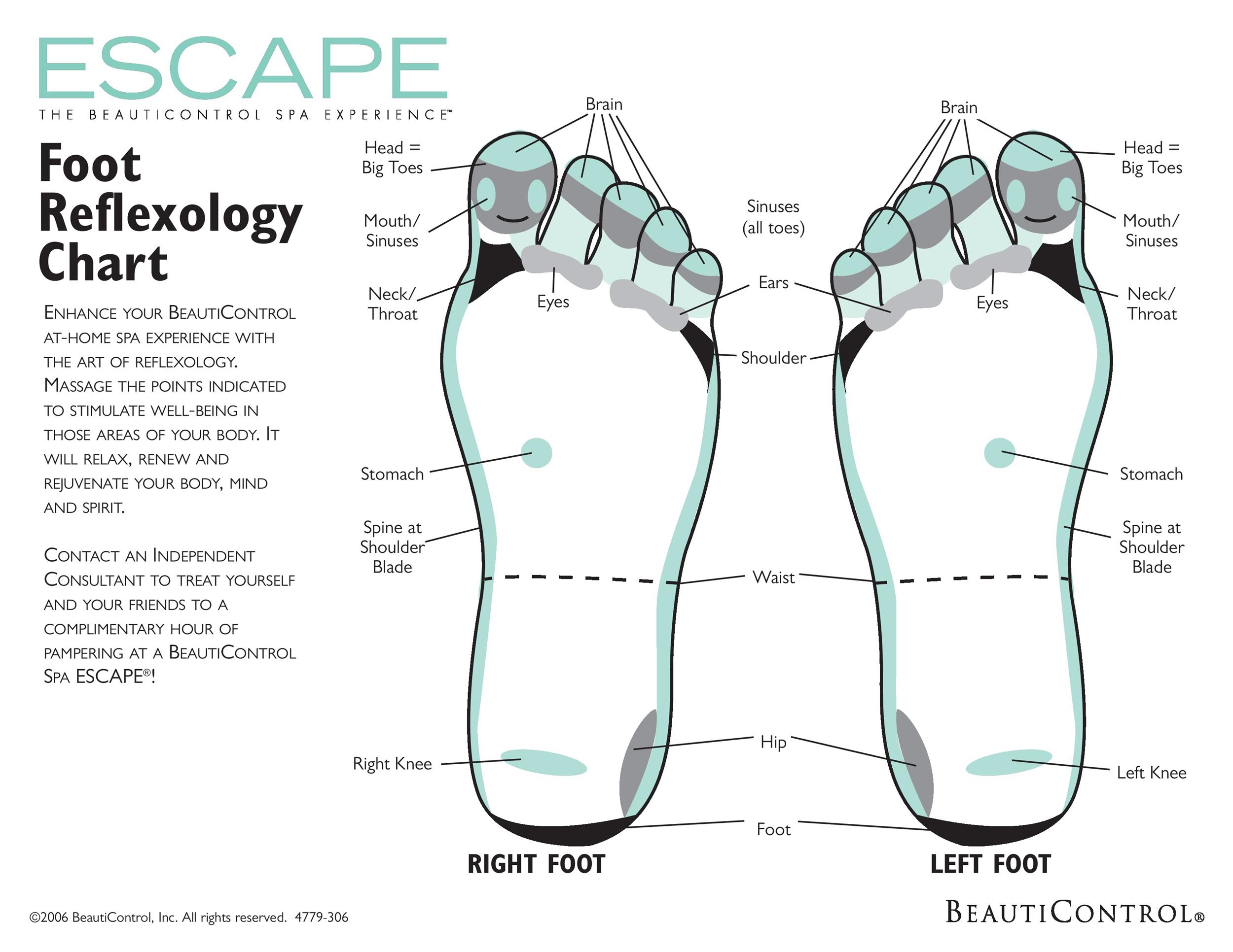 31 Printable Foot Reflexology Charts Amp Maps