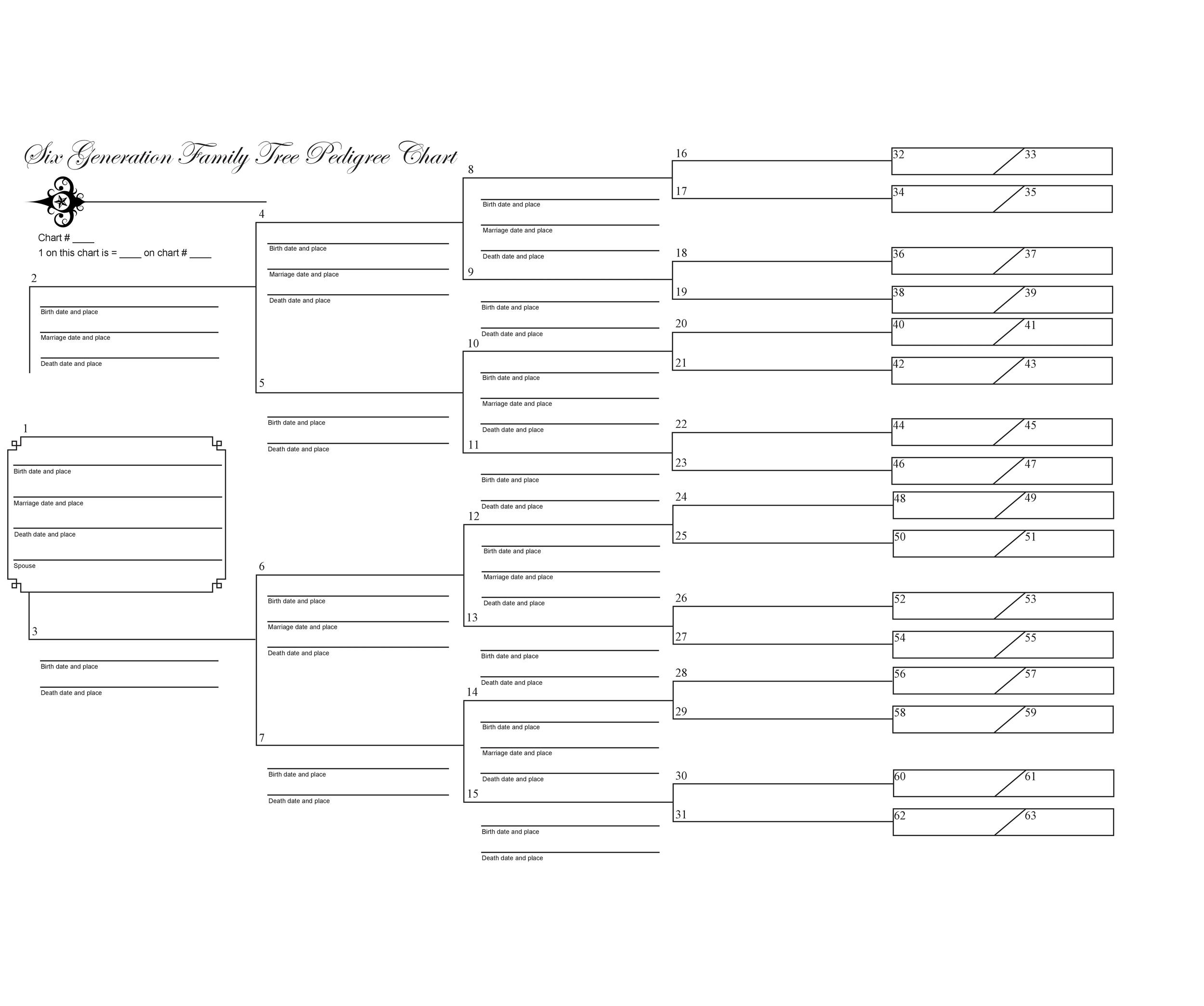 50 Free Family Tree Templates Word Excel