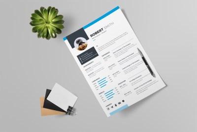 Clean Professional Resume Design
