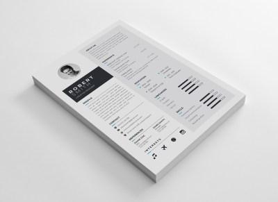 A4 Stylish CV Template