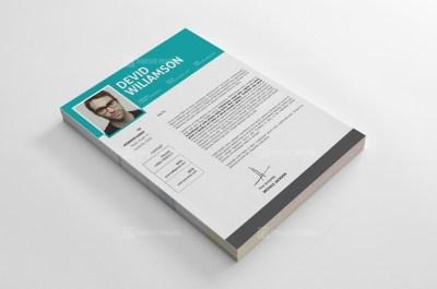 Stylish Resume CV Templates