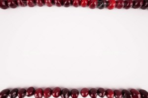 Cherry frame stock image