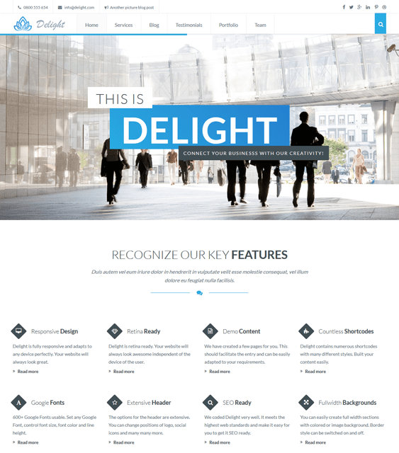 delight one page wordpress themes feature