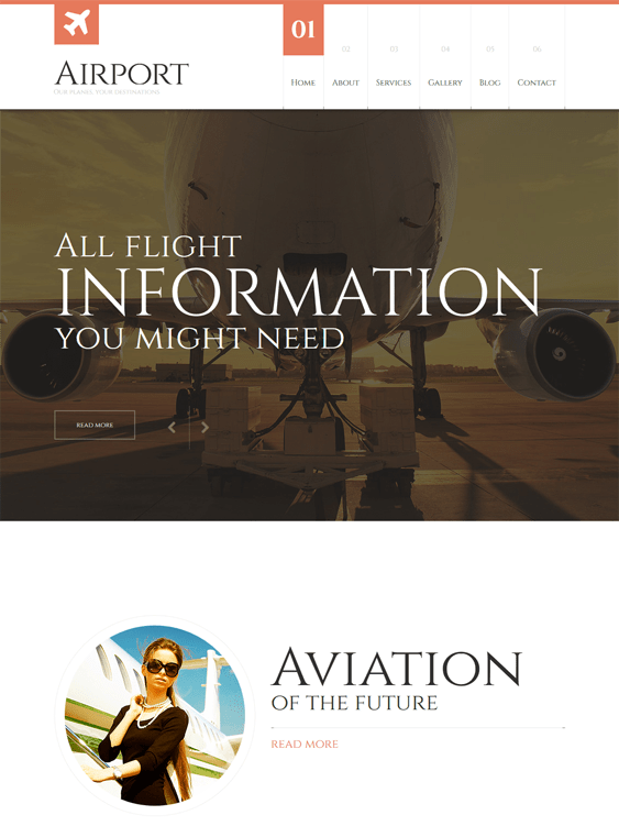 private airline transportation wordpress themes