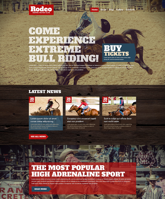 rodeo dark wordpress themes