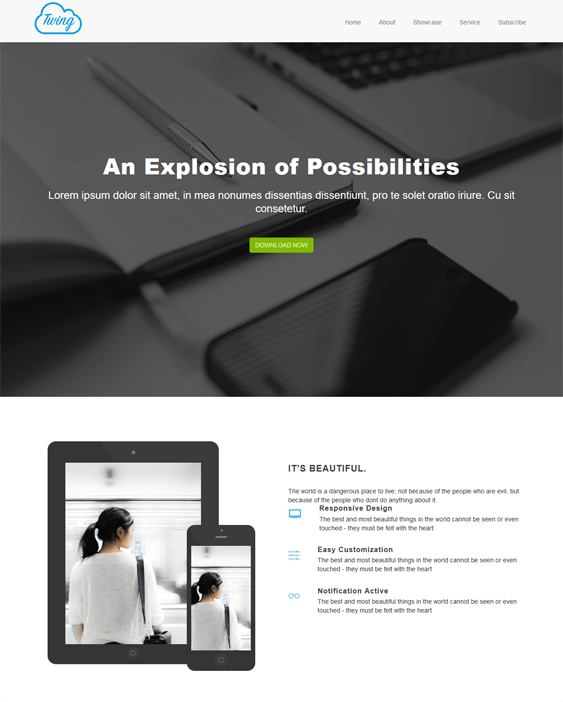 twing one page wordpress themes