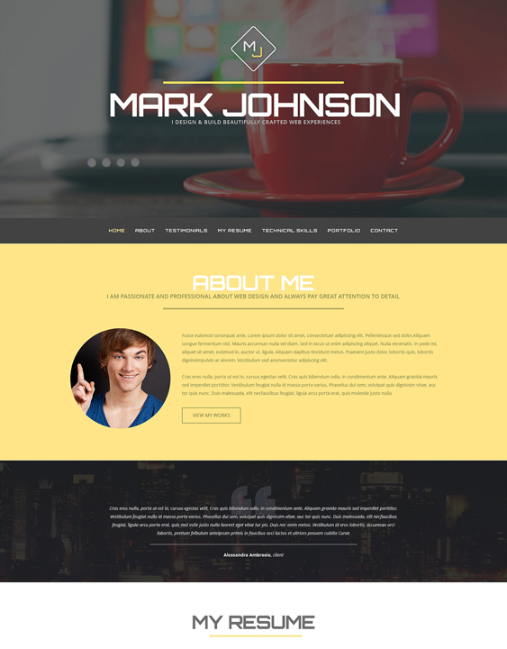 web designer1 resume cv wordpress themes