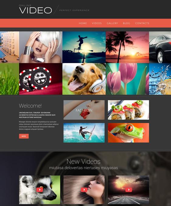 video wordpress themes blog