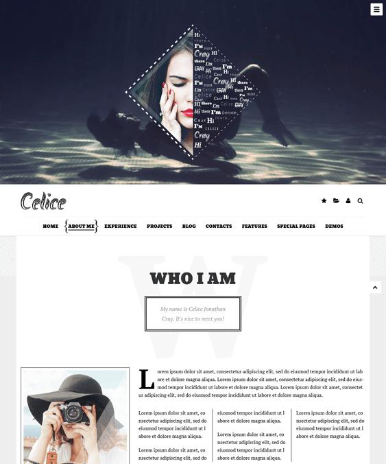 celice resume cv wordpress themes