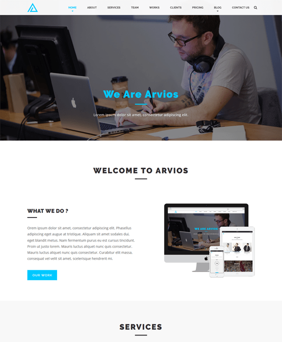 arvios business drupal themes