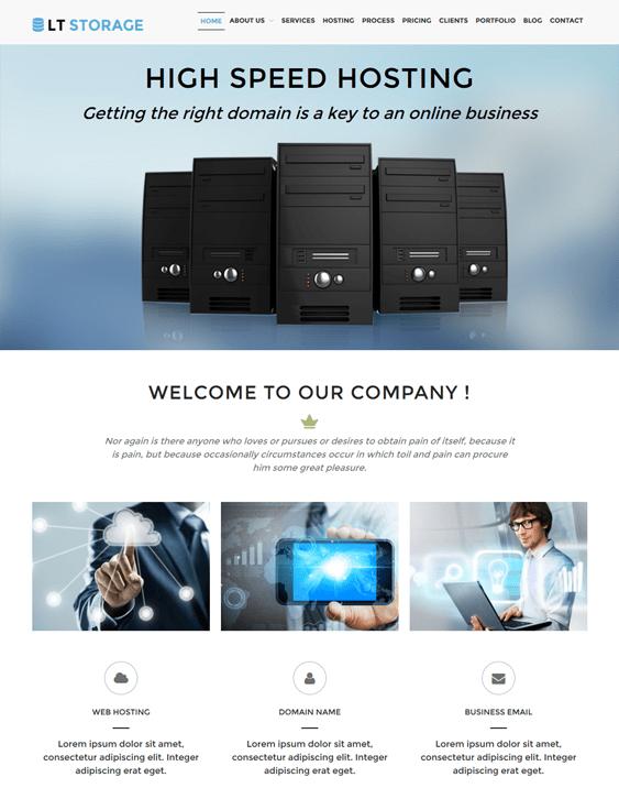 lt storage web hosting wordpress themes