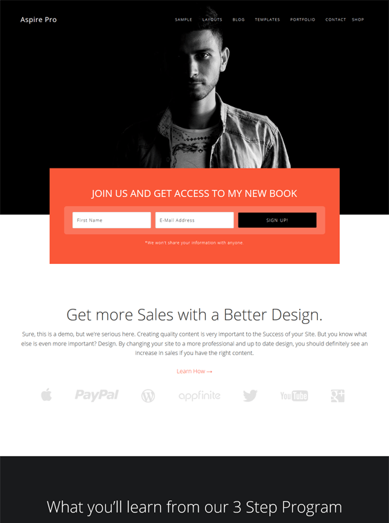 aspire book wordpress themes