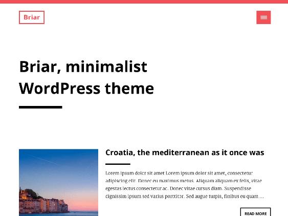 briar free minimal wordpress themes
