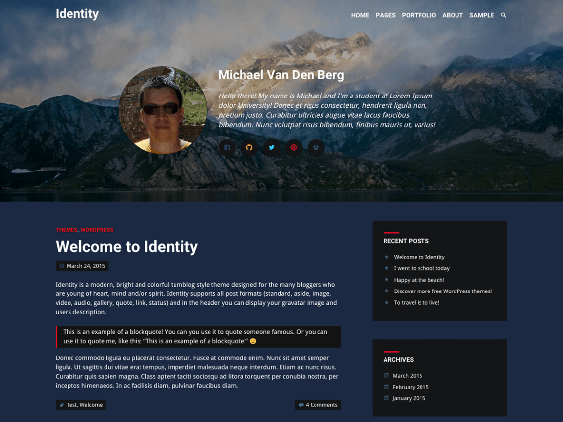 identity free dark wordpress themes