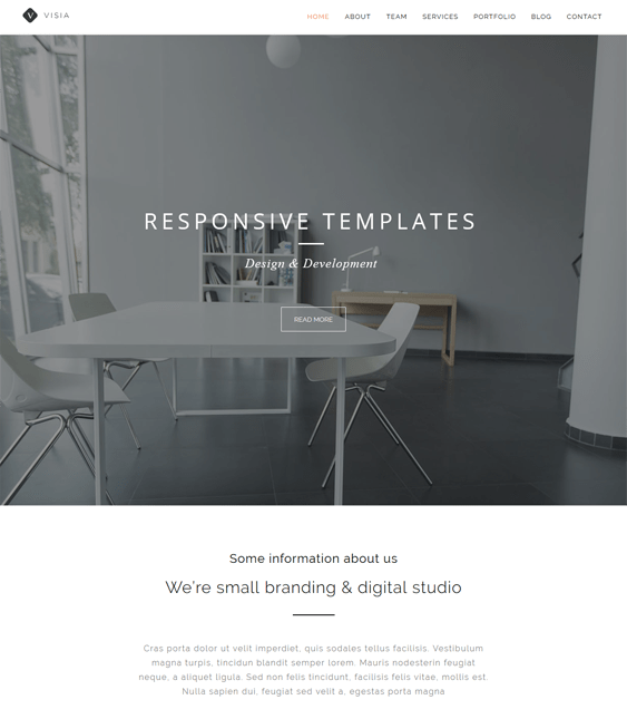 visia one page wordpress themes