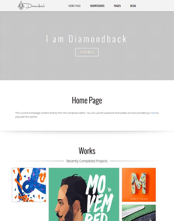 diamondback masonry wordpress themes