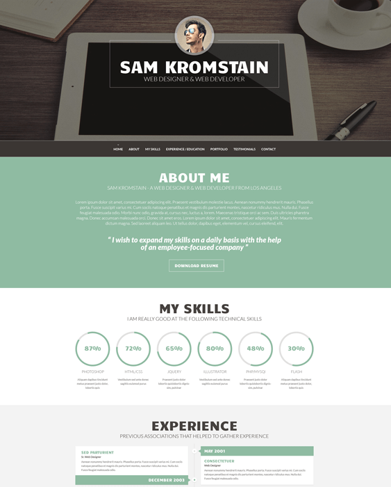 web developer cv resume wordpress themes