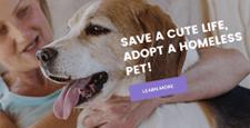 best nonprofit charity joomla templates feature