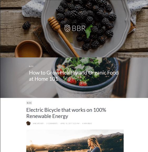 blackberry food recipe wordpress themes