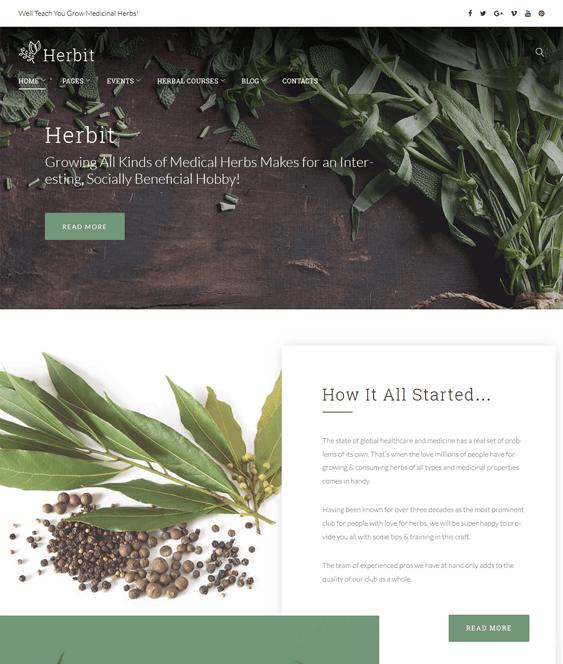 herbit medical wordpress themes doctors clinics feature