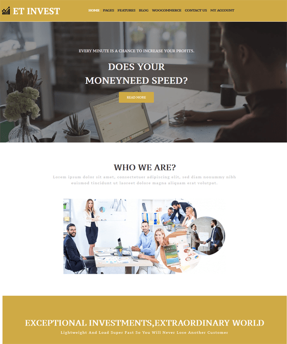 finance wordpress themes for financial websites