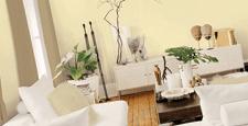 best shopify themes homewares home decor feature
