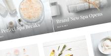 best wordpress themes beauty blogs feature
