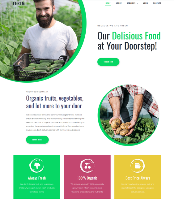 wordpress themes green organic eco-friendly websites