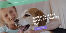 best joomla templates for pets vets feature