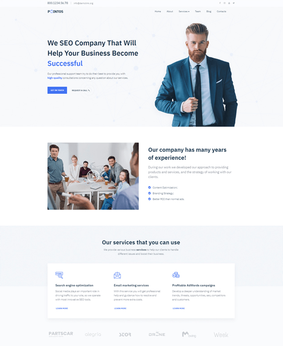wordpress themes seo consultants company