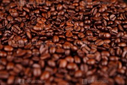 Roasted coffee whole beans stock photo