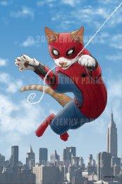 SpiderCat_Web