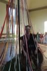 Wren guarding the maypole