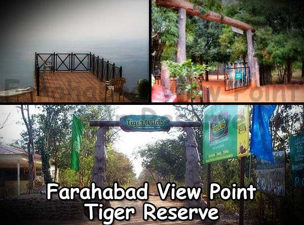 Farahabad View Point Mehabubnagar Tiger Reserve