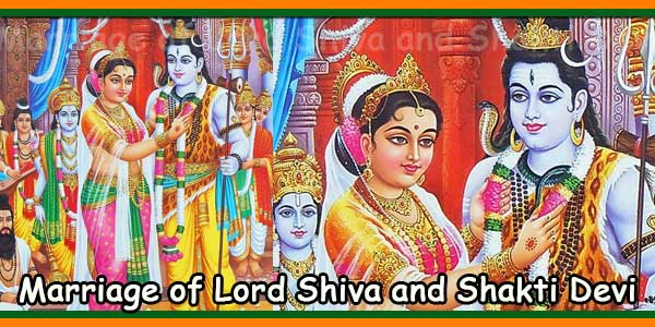 Marriage of Lord Shiva and Shakti Devi