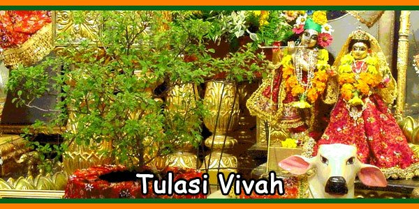 Tulasi Vivah-Marriage
