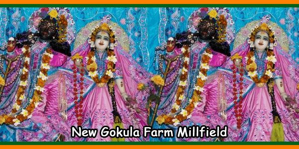 New Gokula Farm Millfield