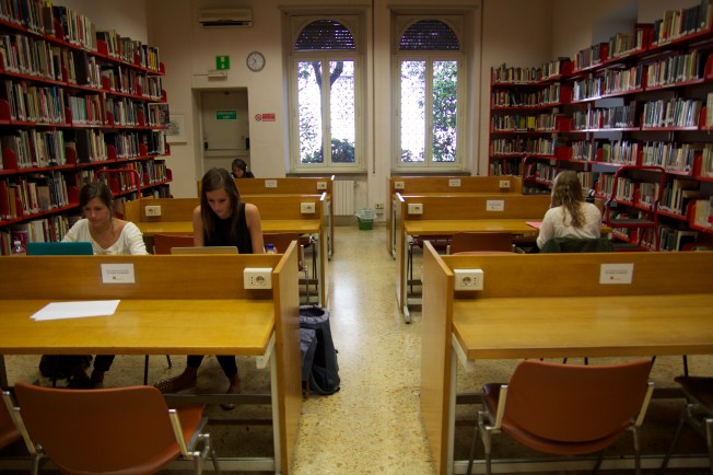 Students in the Library studying for their finals