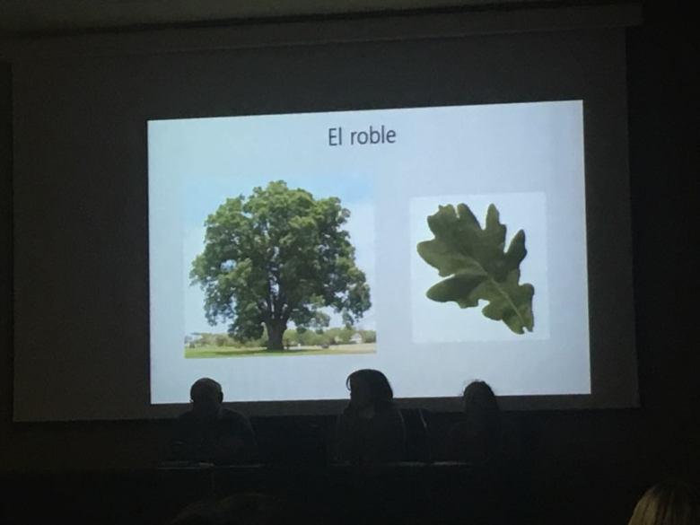 BotánicaPres.jpg
