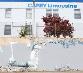 Living Walls: Grey as the New Voice of Dissent in the City of Atlanta