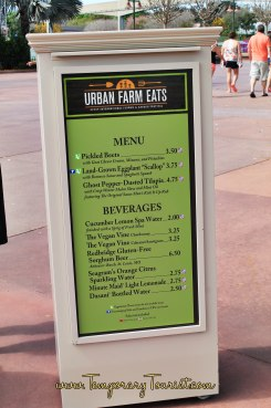 Urban Outdoor Kitchen at Epcot's International Flower and Garden Festival #EpcotinSpring #FlowerandGarden